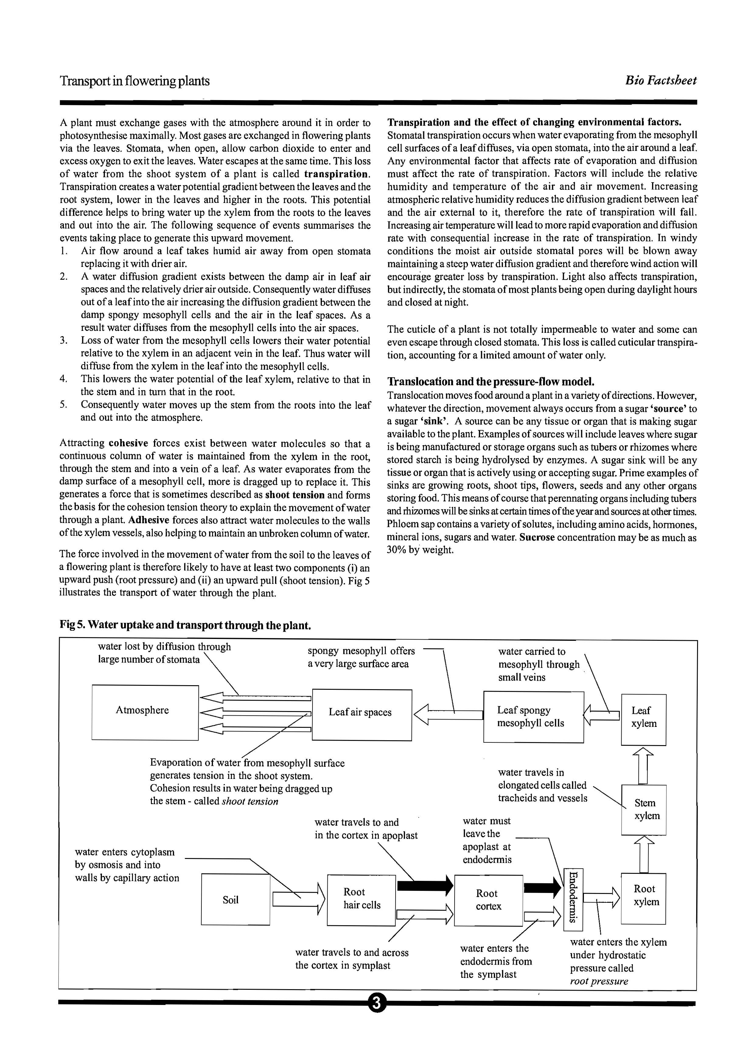 82 Transport in Flowering Plants_Page_3.jpg