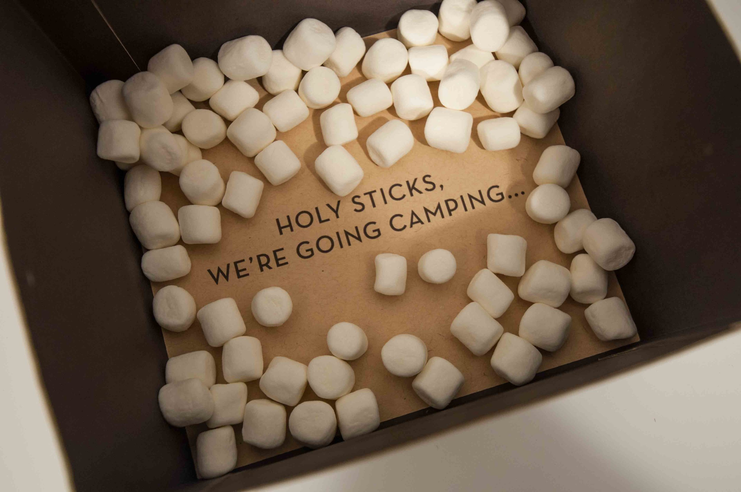 Colleen Goldhorn Photography and Design – The Sticks: Premium Camping Kit