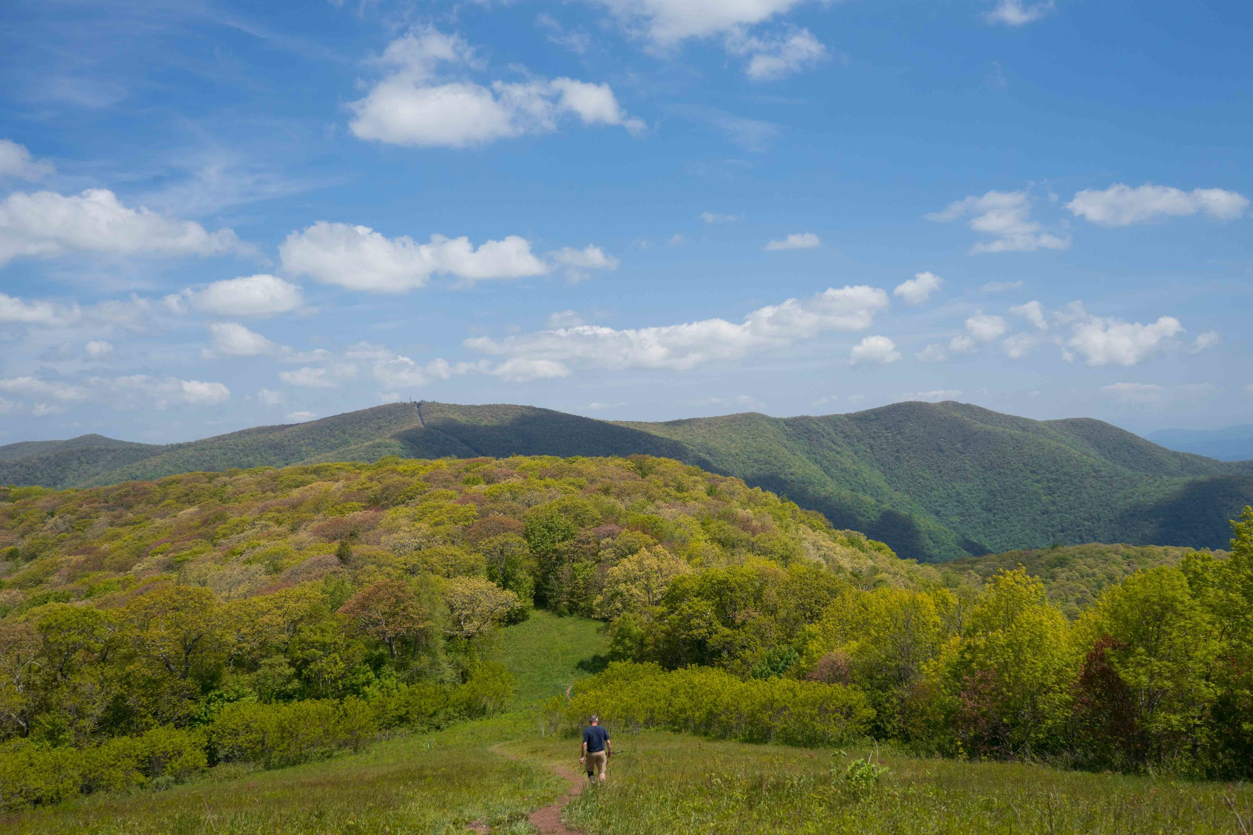 Siler Bald, Appalachian Trail, North Carolina