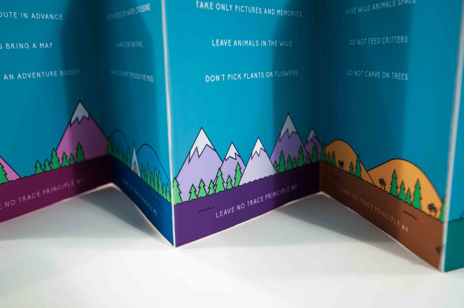 penn's Woods: Camping Guide - branding & campaign design