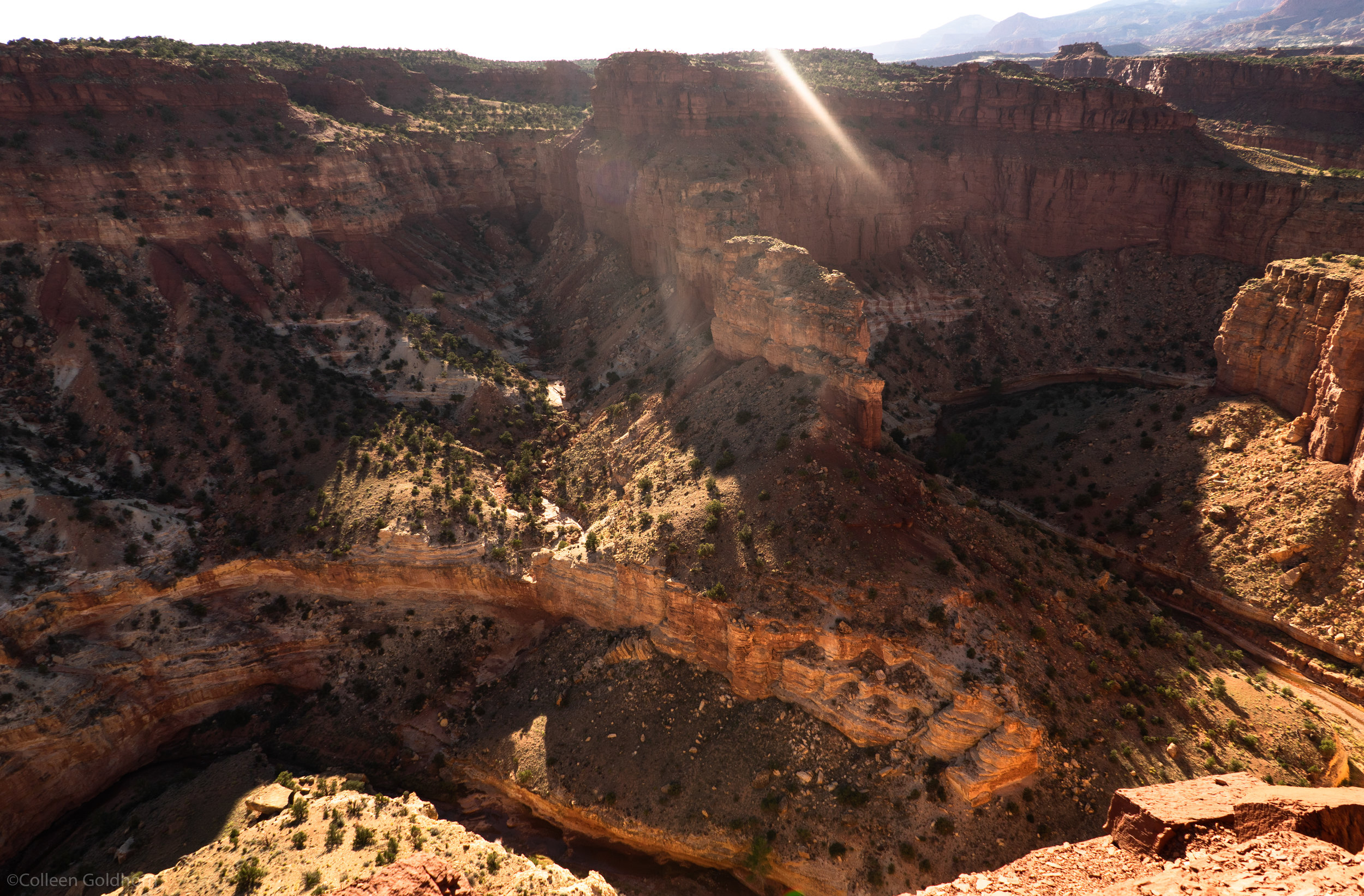 We walked up to Goosenecks Overlook without knowing too much about it, and were pleasantly surprised to find a little canyon within the park.