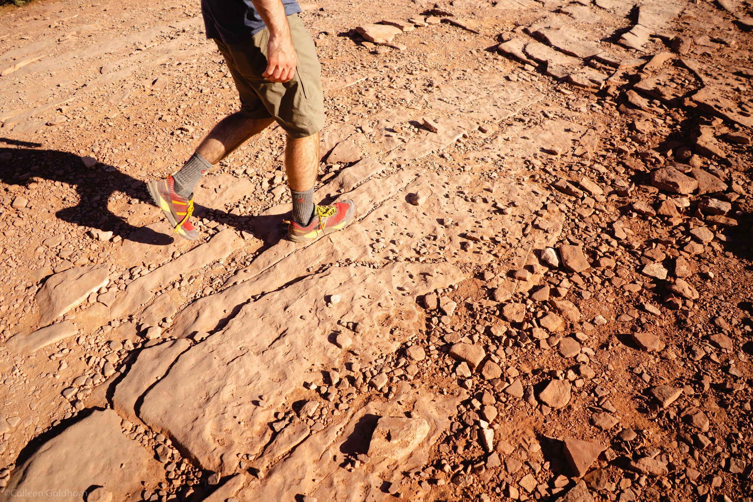 and a few shorter walks in the Utah desert.