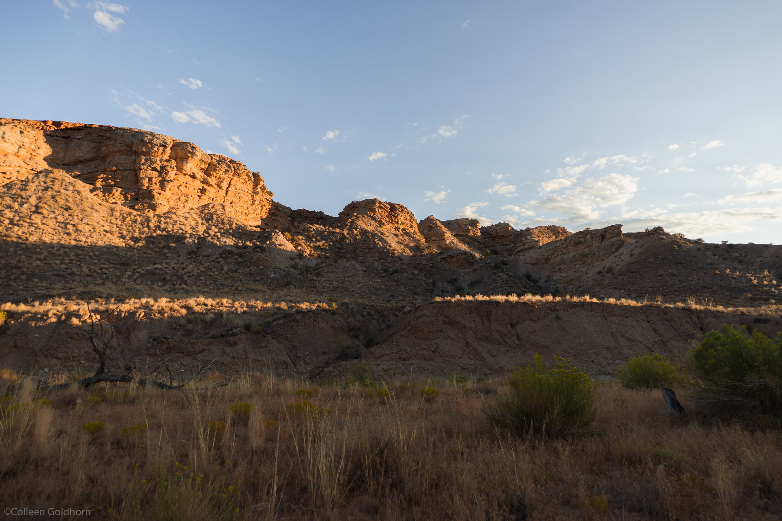 As we walked back to the car, the sun was setting and covered the valley in golden light.