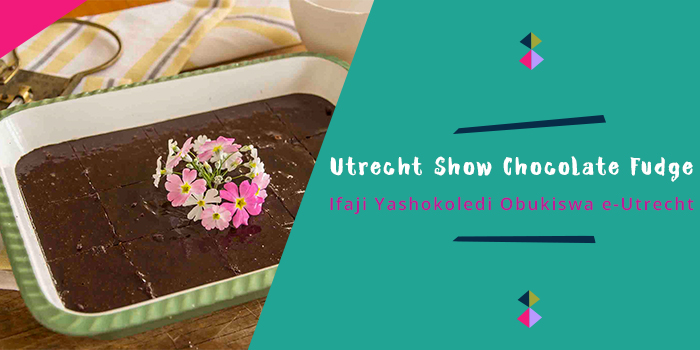 Utrecht Show Chocolate Fudge.jpg