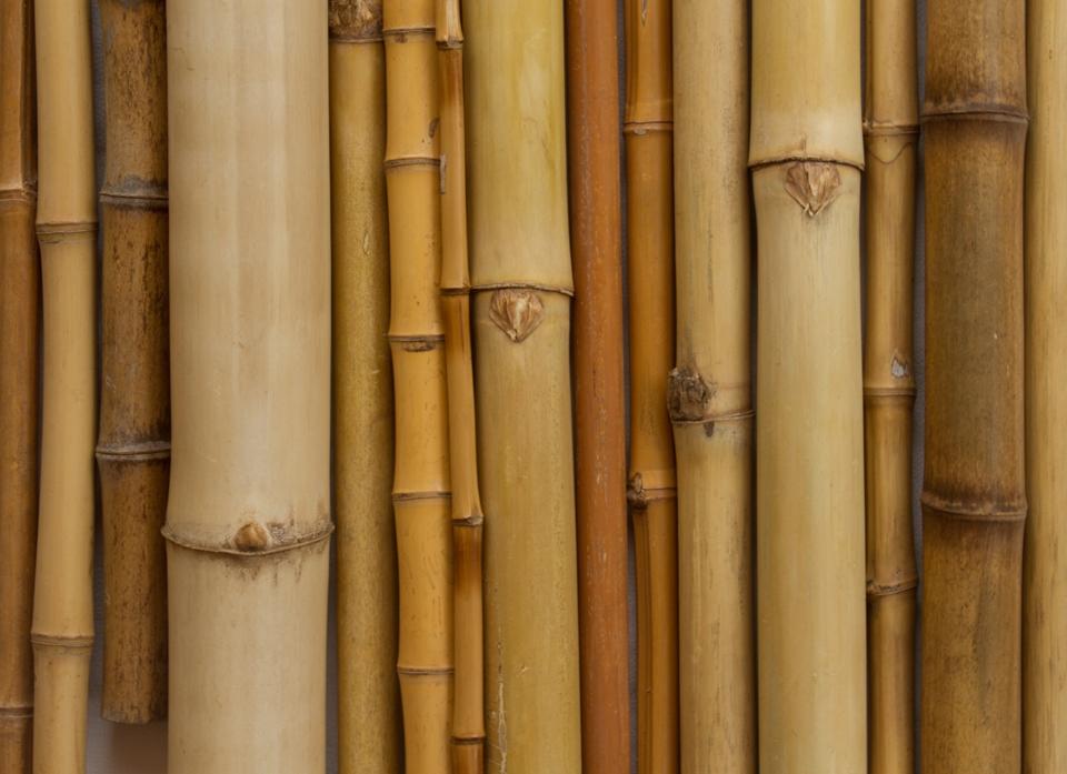 Bambu Montagem-0920.jpg