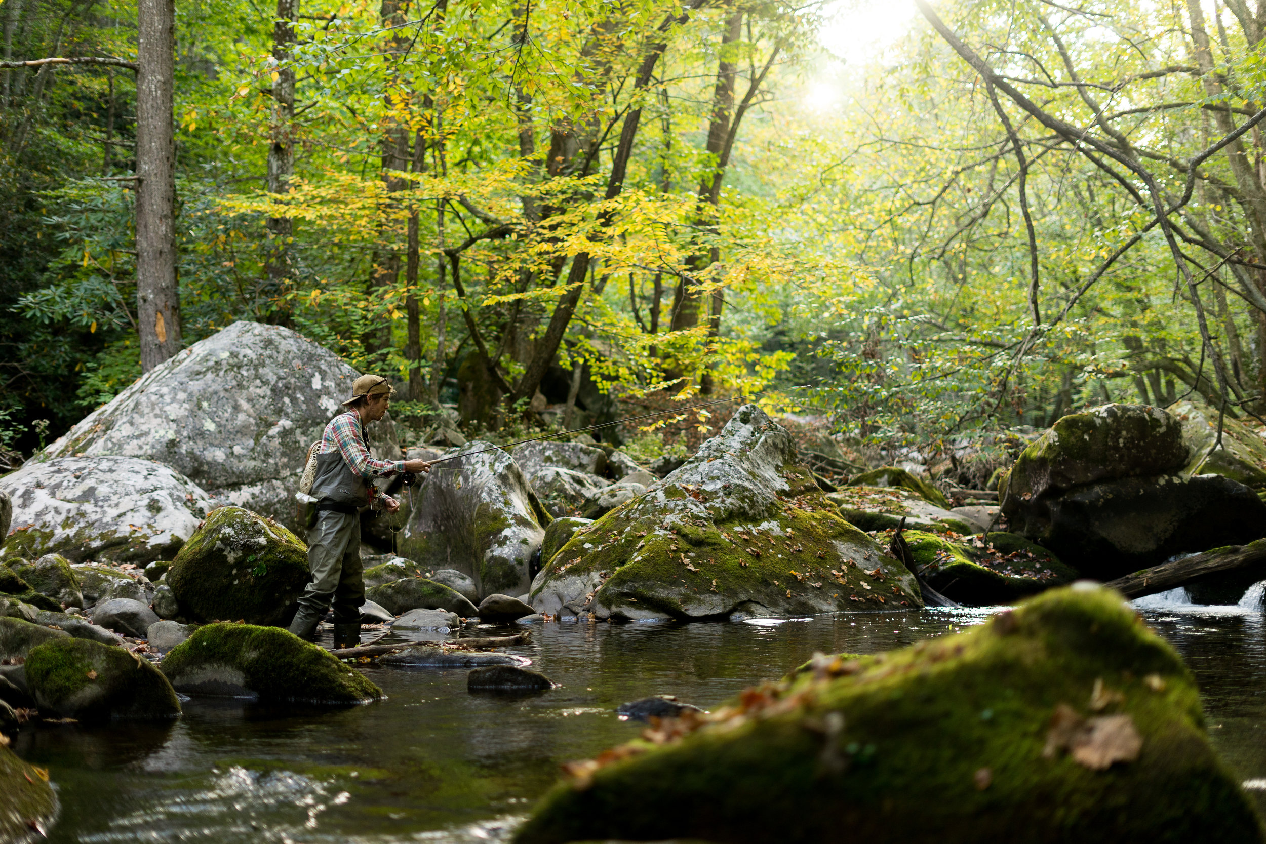 TJ Maurer fishing the Little River in the Great Smokey Mountain National Park