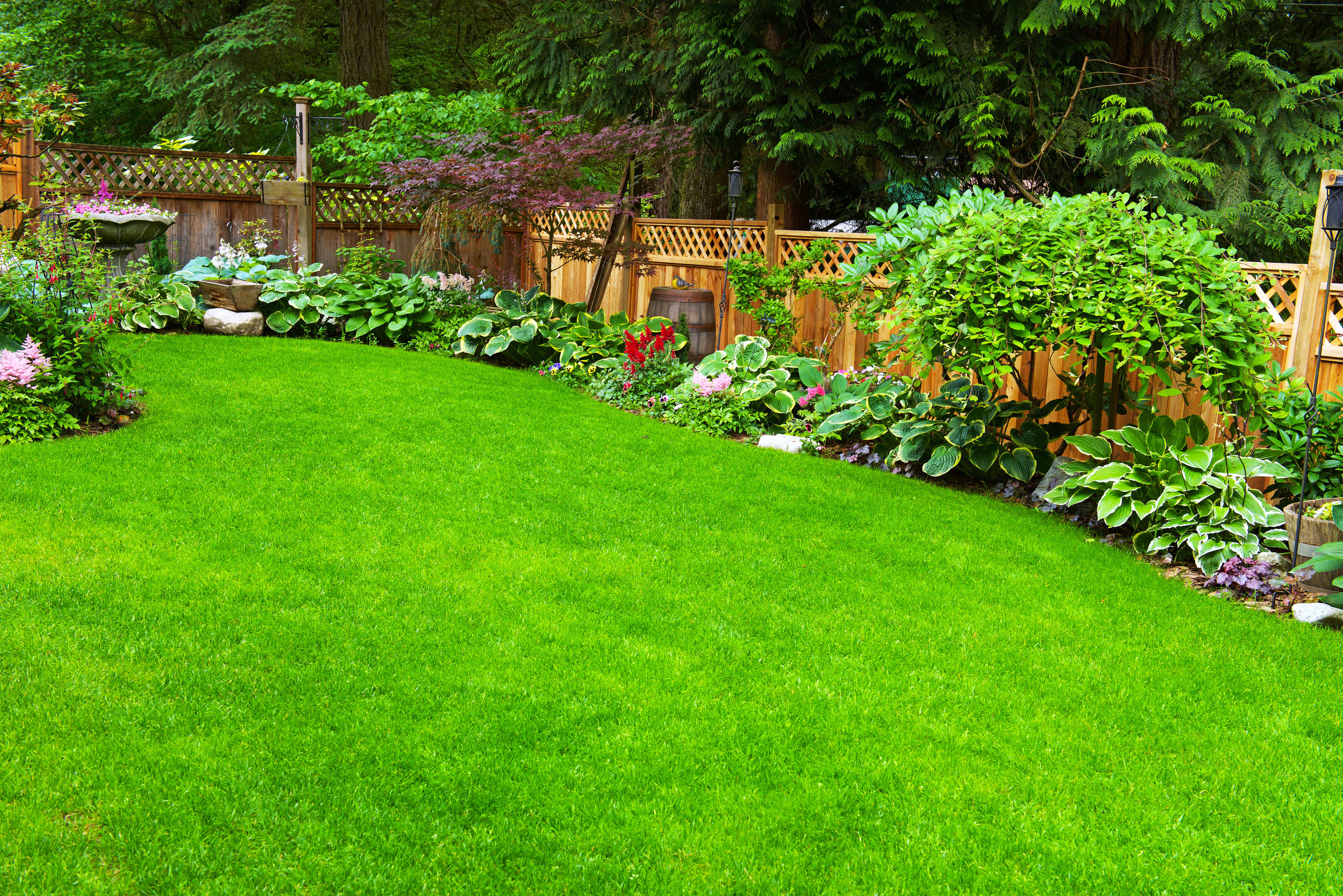 5 Innovative Fence Line Landscaping Ideas For Your Glen Cove Ny