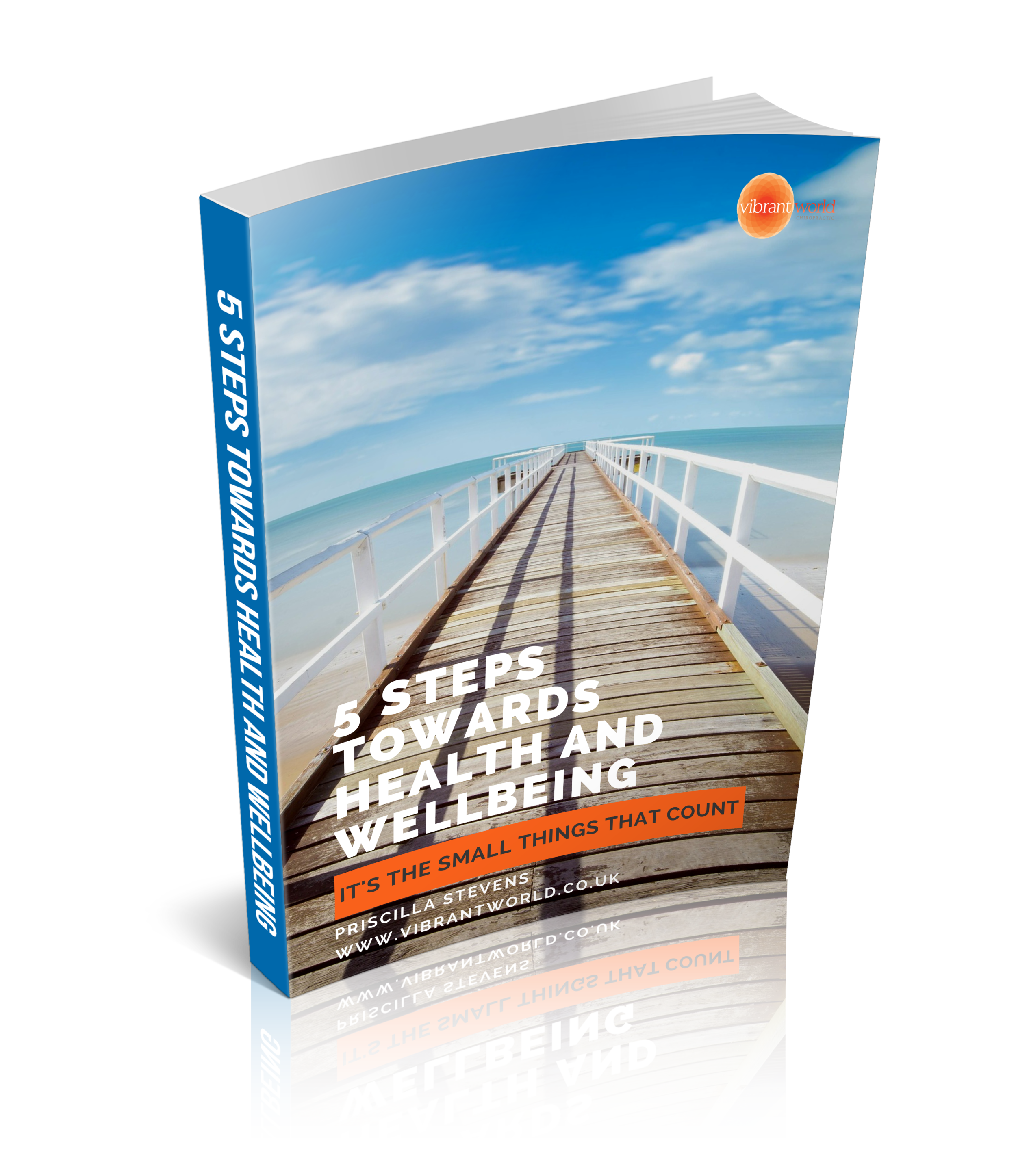 3D cover of 5 Steps ebook.png