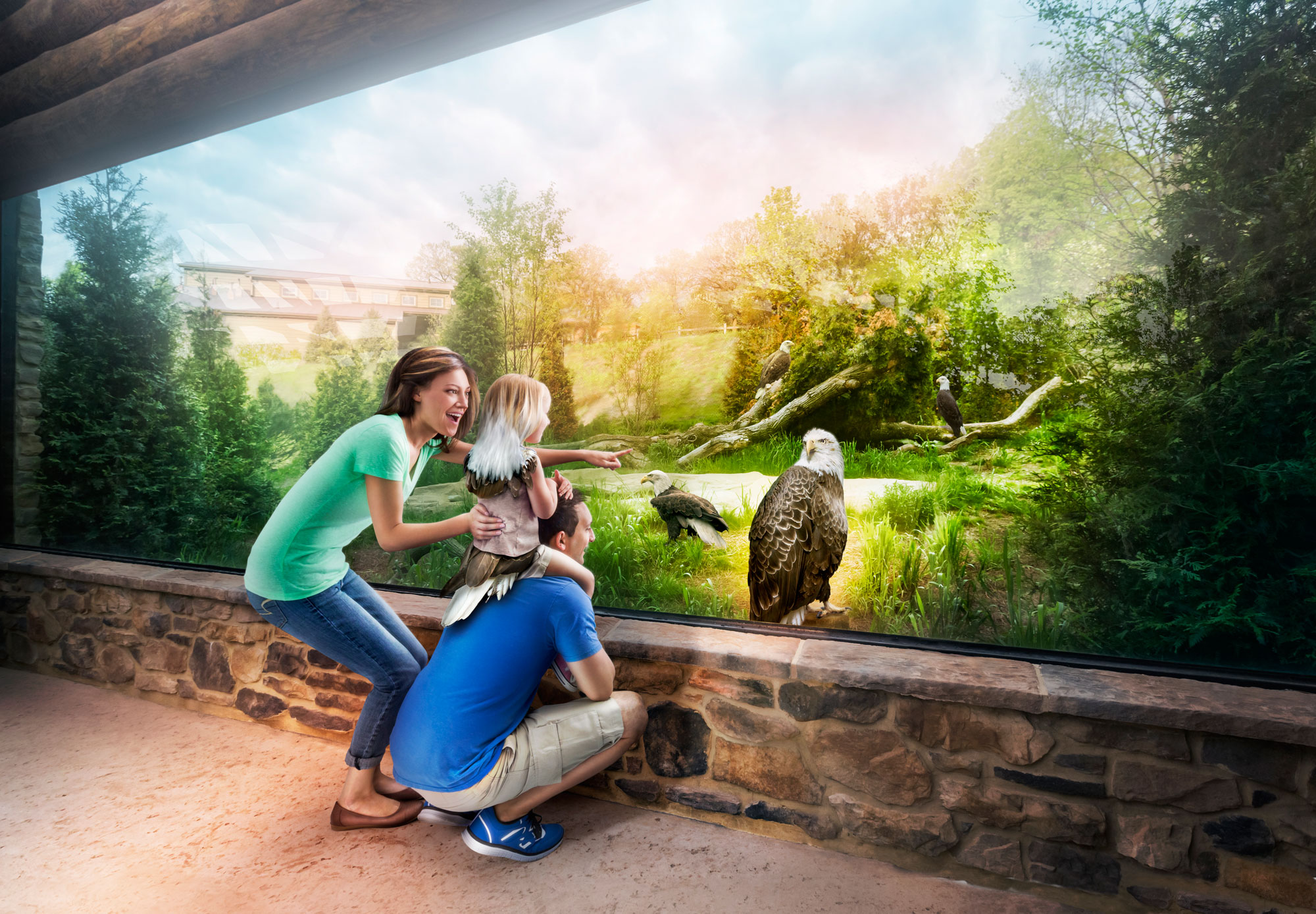 professional composite image of family looking at bald eagles and child with eagle features