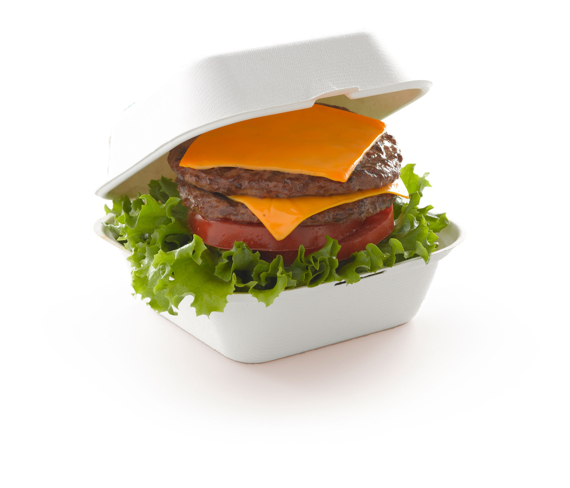 Cheeseburger00001.jpg