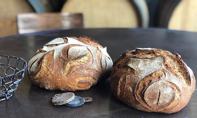 Supporting artisans who take pride in their craft has always been very important to me. All of our food here at the beer lab is made consciously from scratch. We use local ingredients and hand made products that might cost more but it is well worth it. Especially when I look at these whole grain red fife loaves made with red fife grown by @tehachapigrainproject  Time and love put into them when we milled the flour and hand mixed the dough. Then my favorite part, putting those beautiful cuts in the dough using Tyler's amazing UFO lame from @wiremonkeyshop I'm so thankful to have the opportunity to use such wonderful ingredients, so next time you look at our food remember a whole lot of thought has gone into each and every bite!