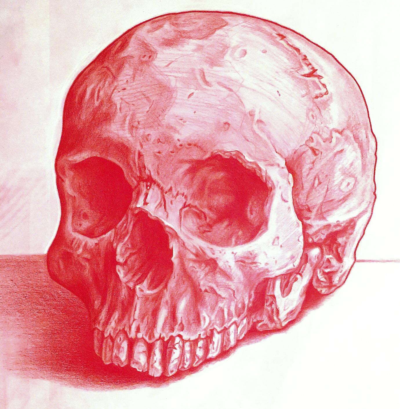 Brand design for Red Skull Industries Denver, CO