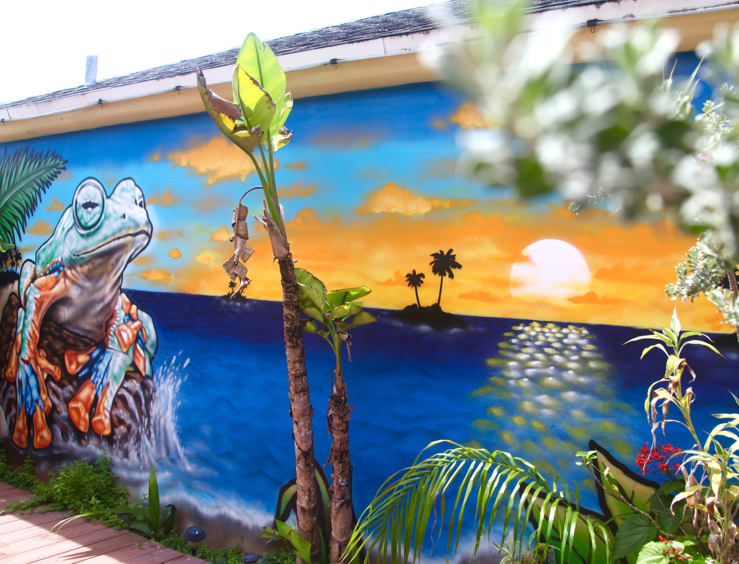 Frog Mural for private collector CoCo Plum, Fl