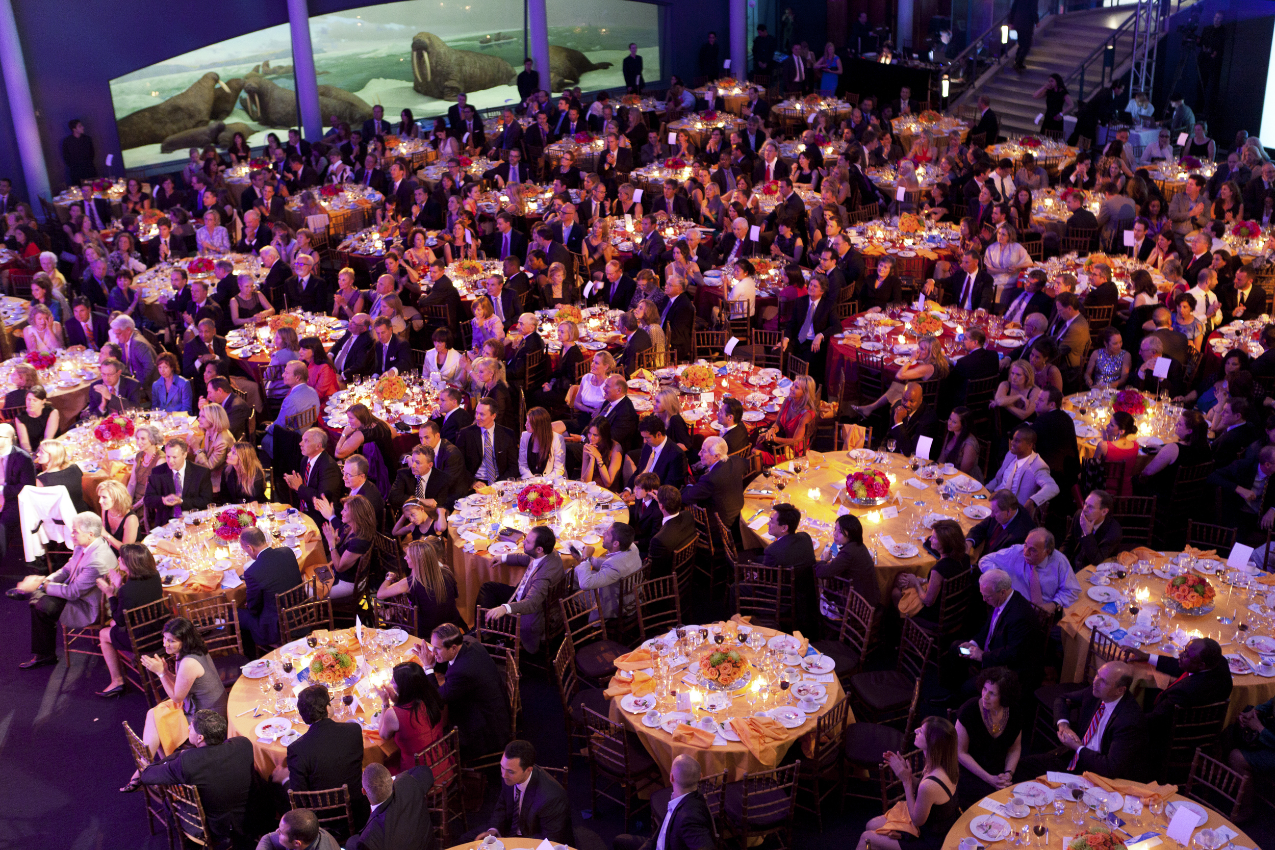 ceci-new-york-gives-back-boys-and-girls-club-of-america-great-futures-gala-2011-invitations-party-decor-museum-of-natural-history-event--14.jpg