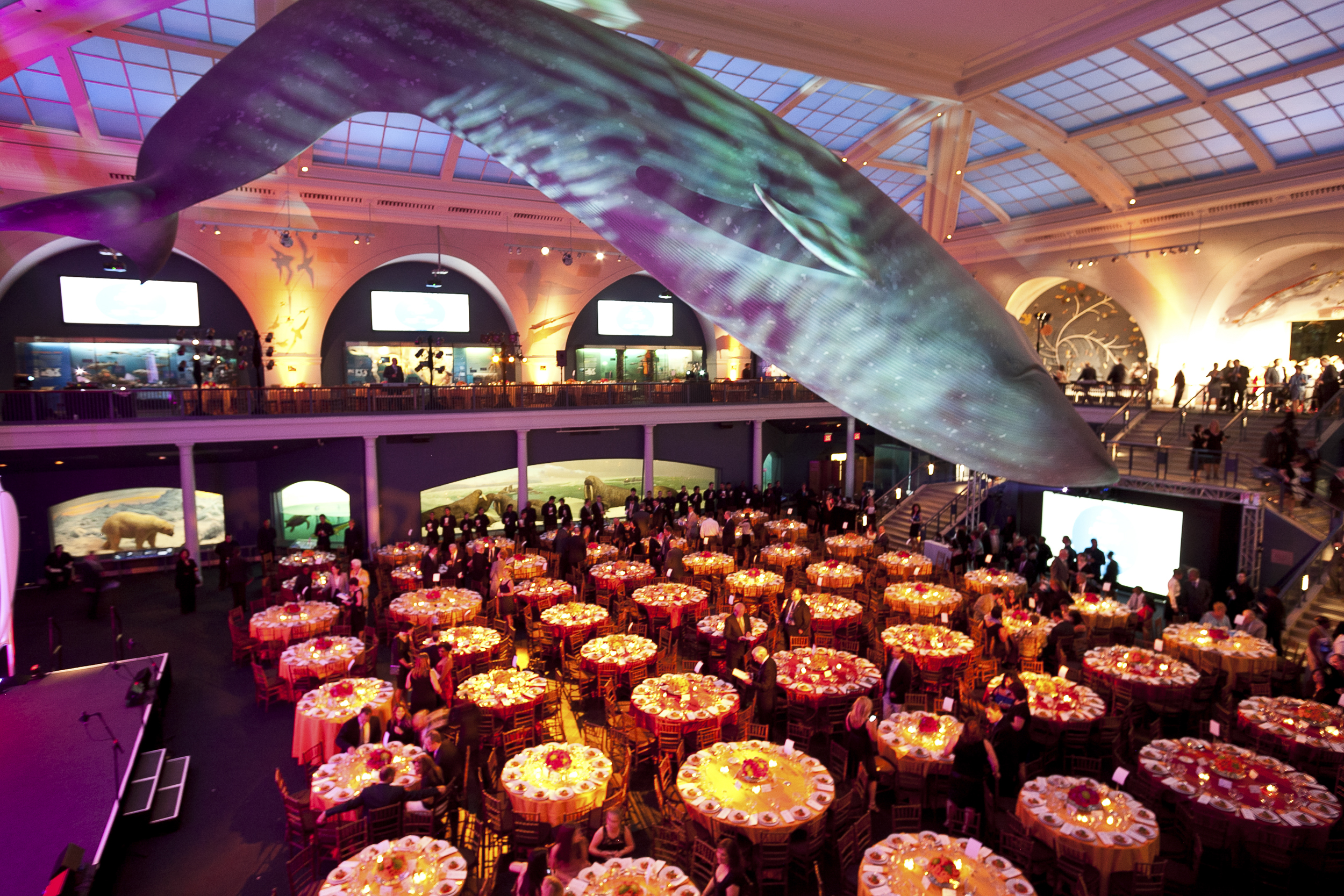 ceci-new-york-gives-back-boys-and-girls-club-of-america-great-futures-gala-2011-invitations-party-decor-museum-of-natural-history-event--4.jpg