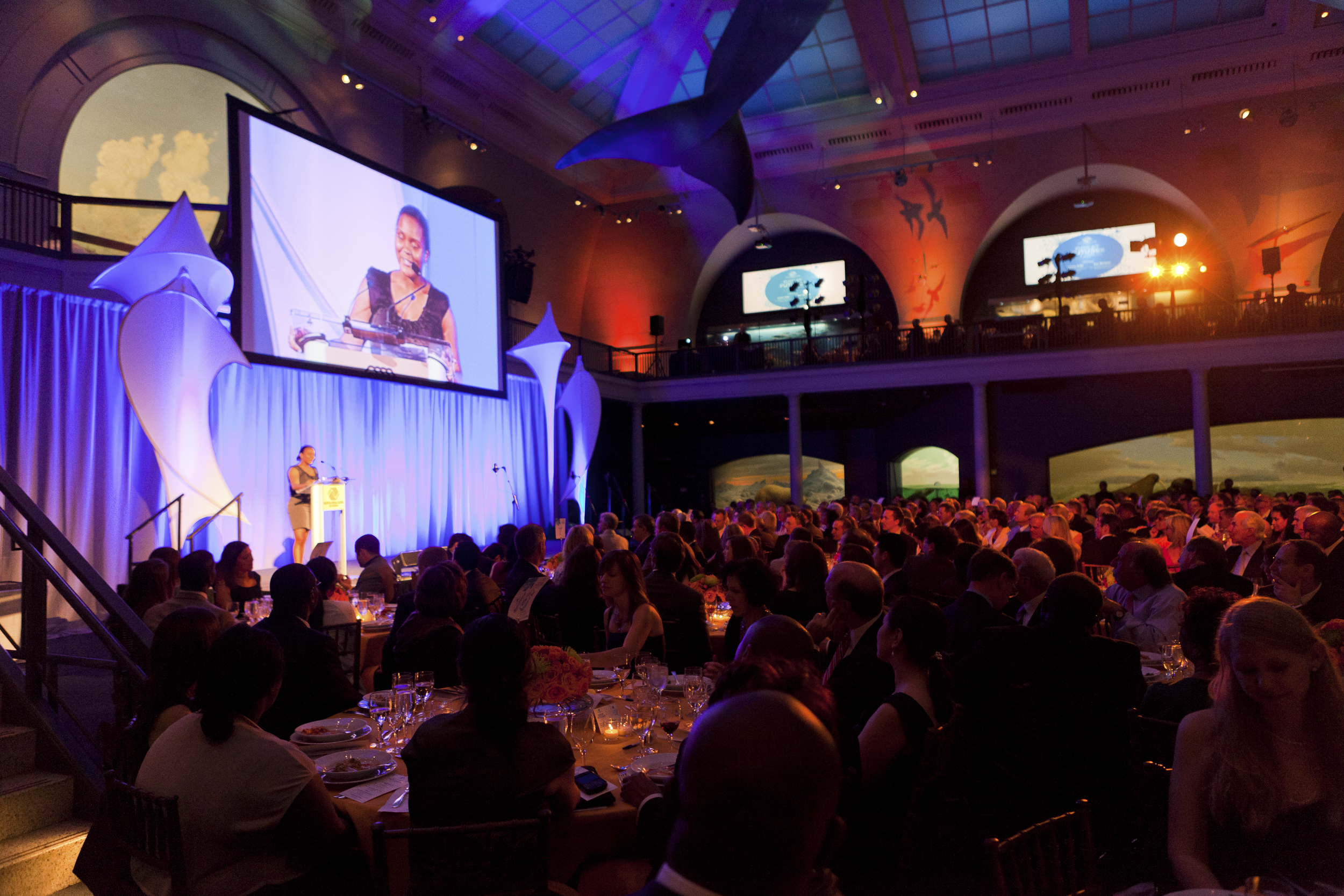 ceci-new-york-gives-back-boys-and-girls-club-of-america-great-futures-gala-2011-invitations-party-decor-museum-of-natural-history-event--9.jpg
