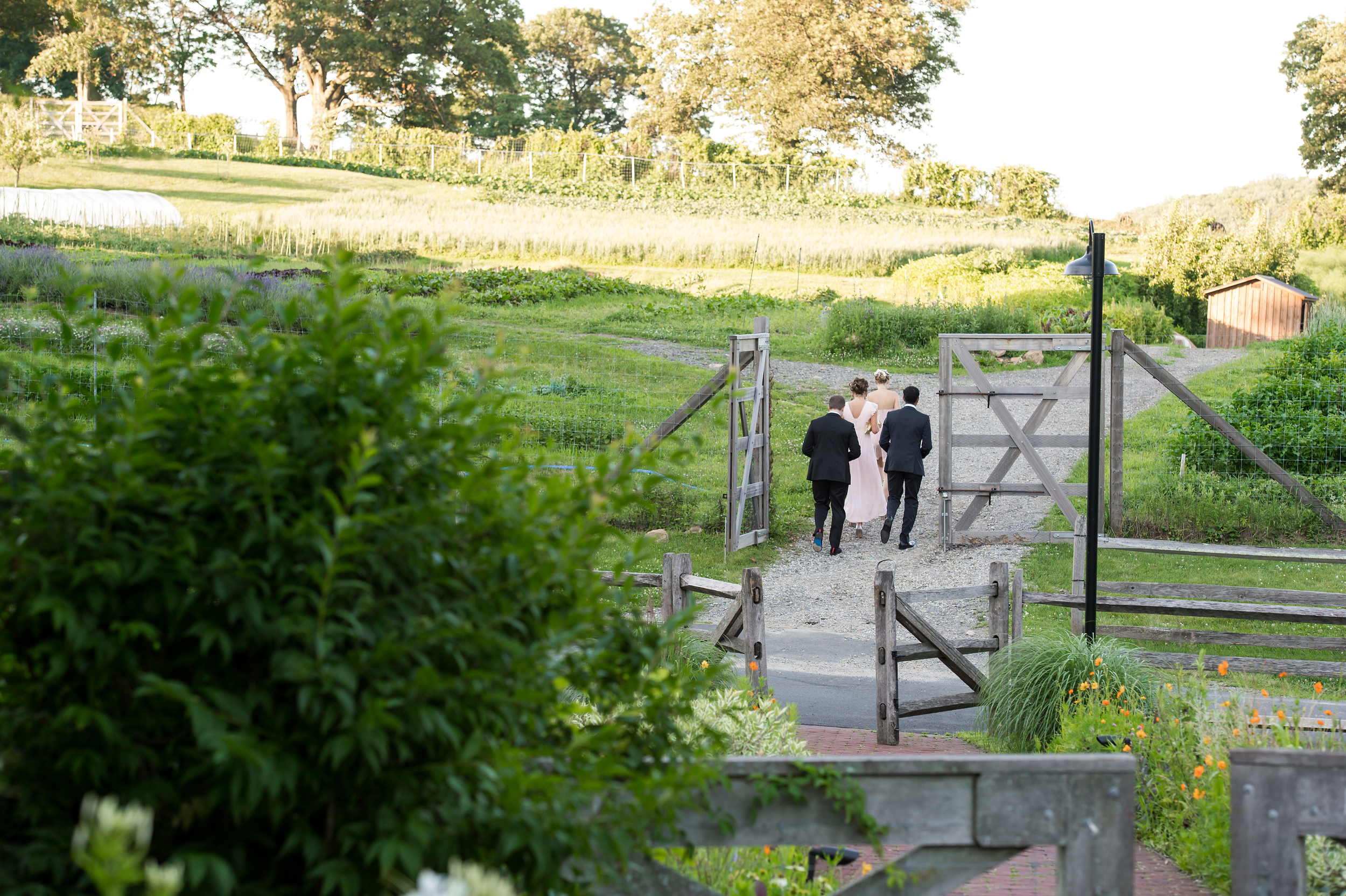 Ceci_New_York_Bride_Wedding_Blue_Hill_29.jpg