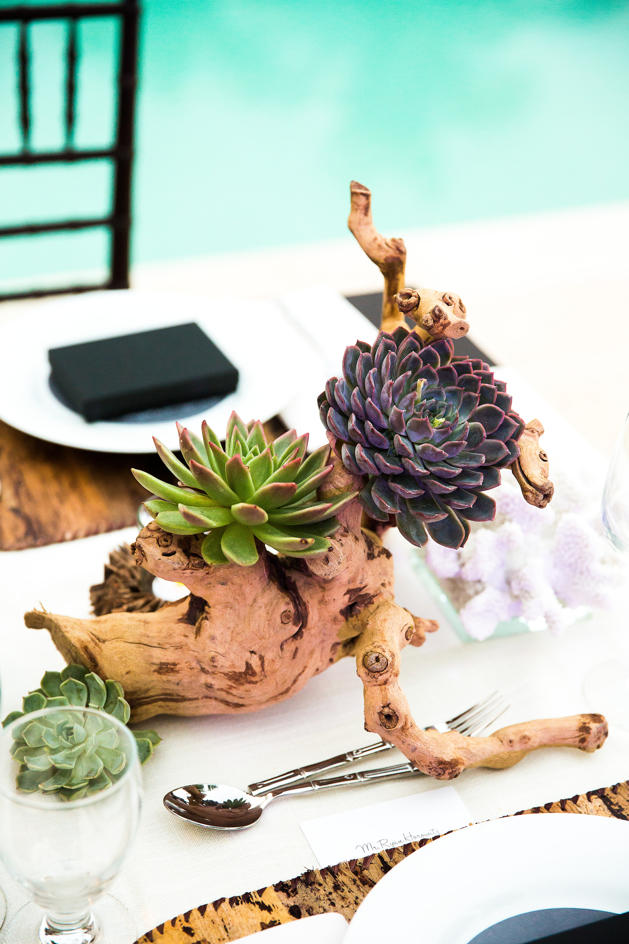 Ceci_New_York_Ceci_Style_Ceci_Johnson_Luxury_Lifestyle_Destination_Bahamas_Wedding_Letterpress_Inspiration_Design_Custom_Couture_Personalized_Invitations_12.jpg