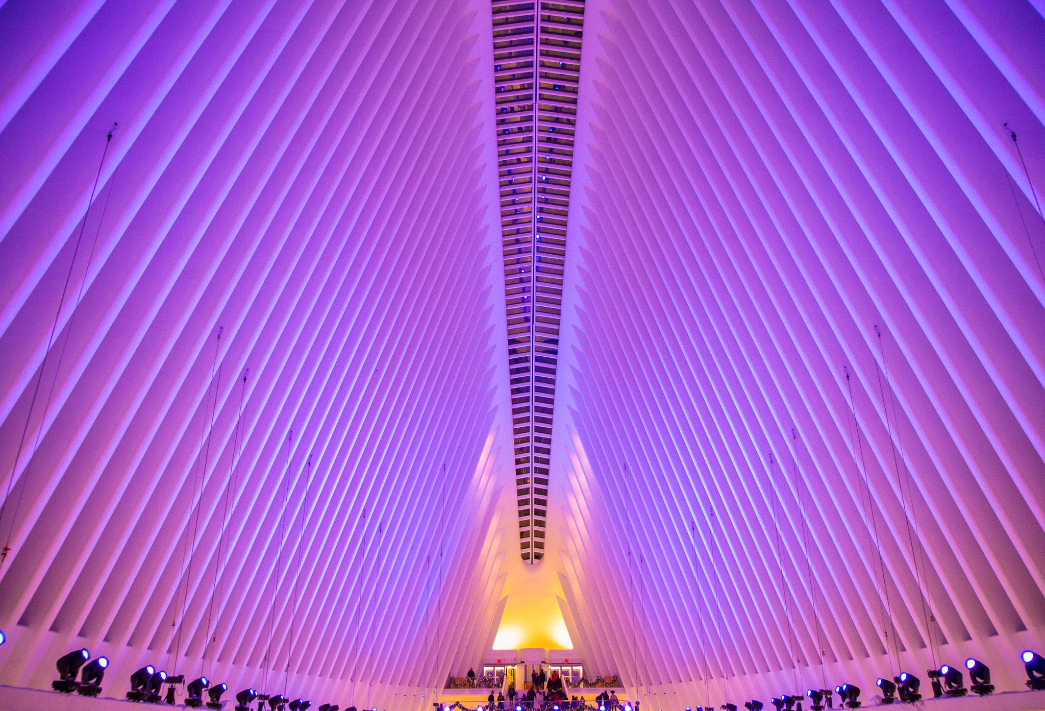 Santiago Calatrava   Please read up on the Spanish architect.