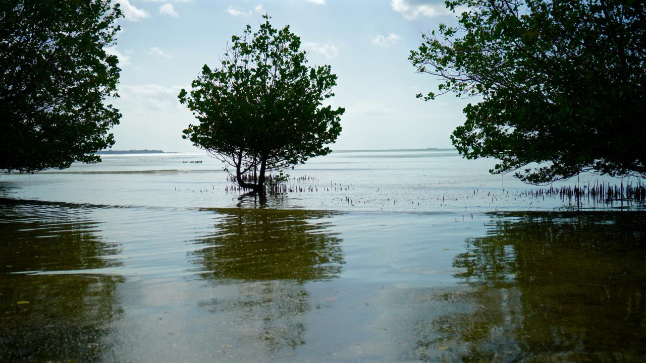 beach - 20.jpg