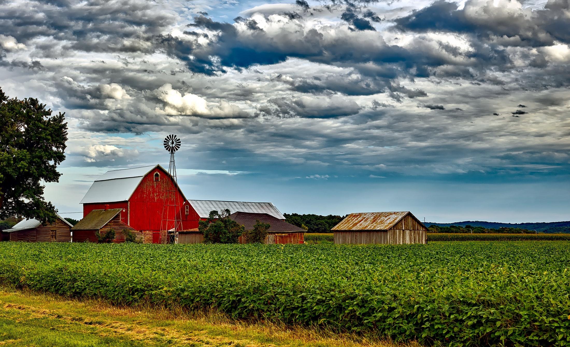 agriculture-barn-buildings-248880.jpg