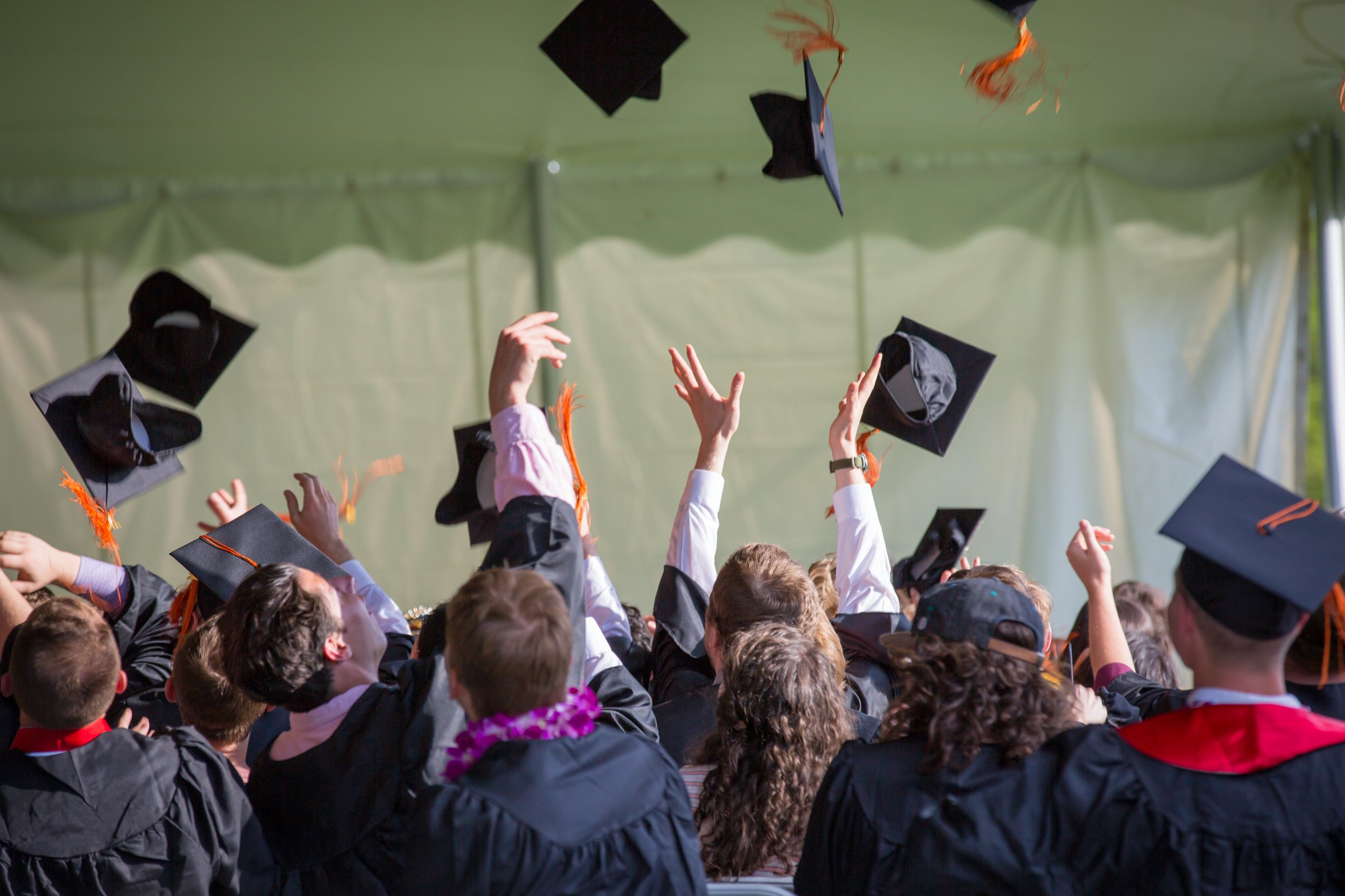 Cap and Gown Graduation Celebration.jpg