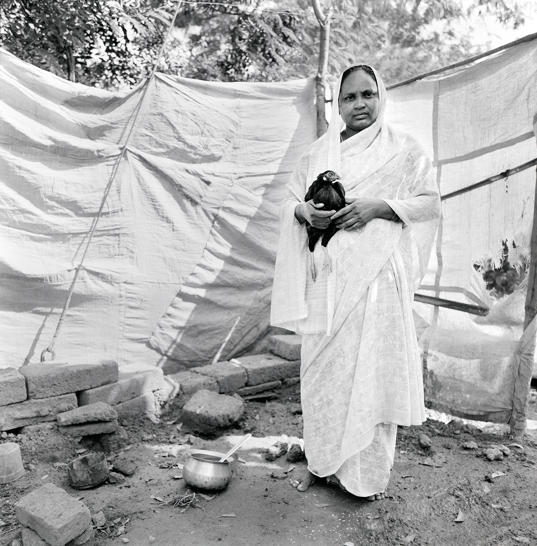 Wounded Bird- Kottareddipalem, India