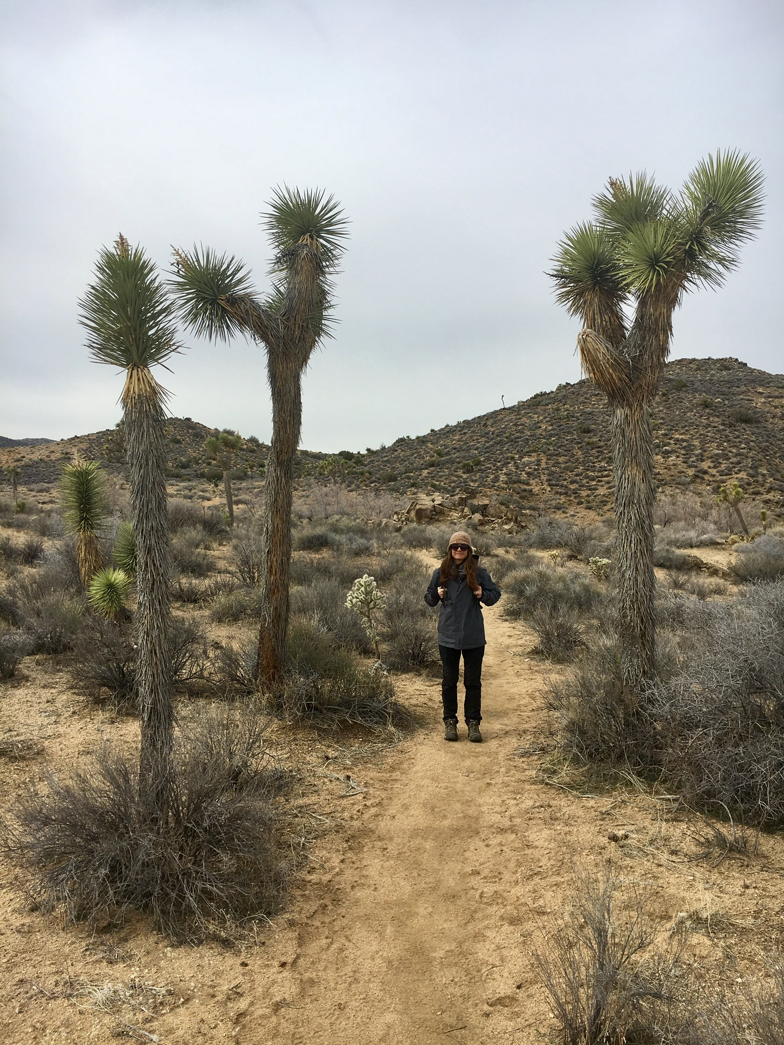Cynthia hiking in the backcountry in Joshua Tree.