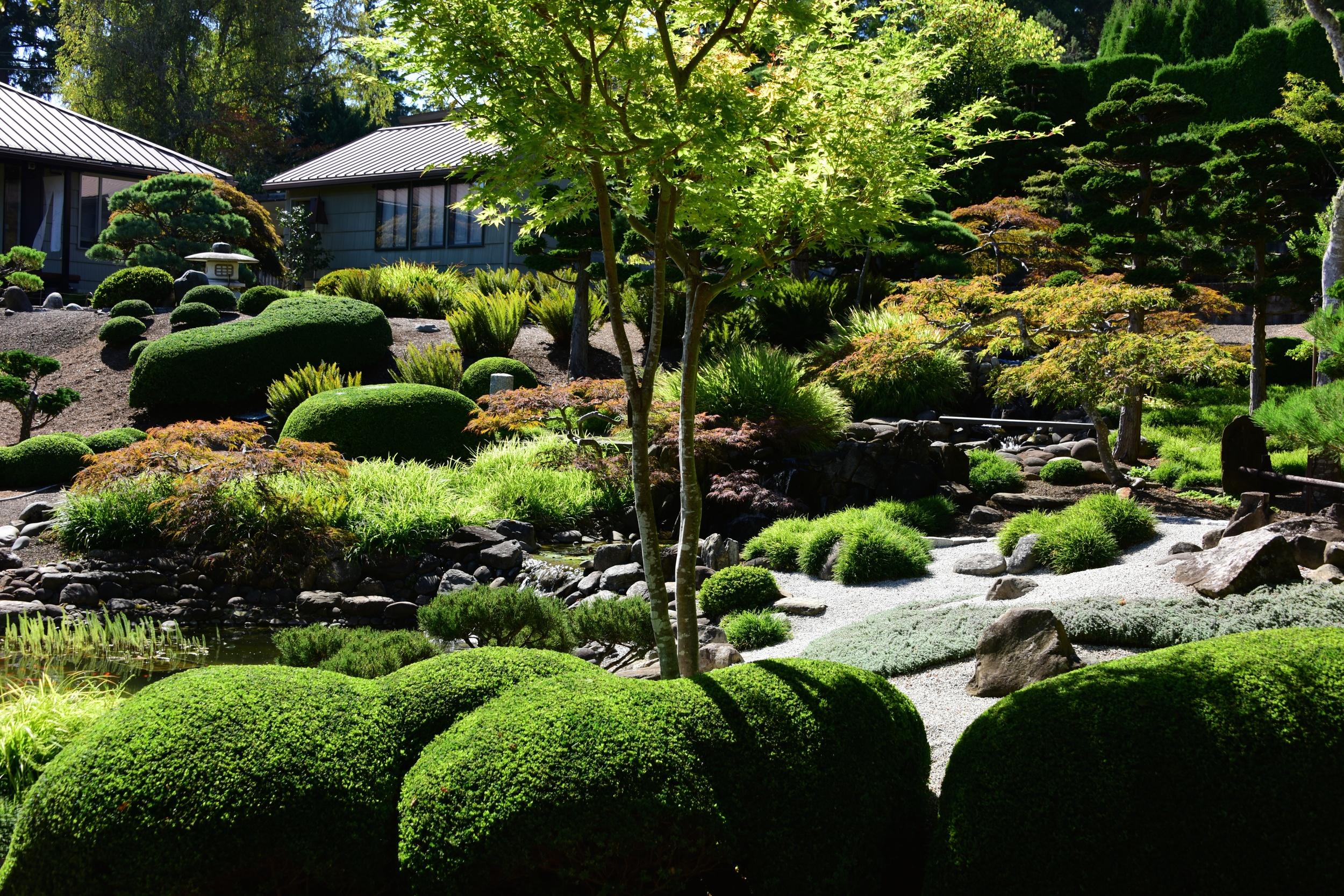 View of Momiji-en Natural Garden from tea house
