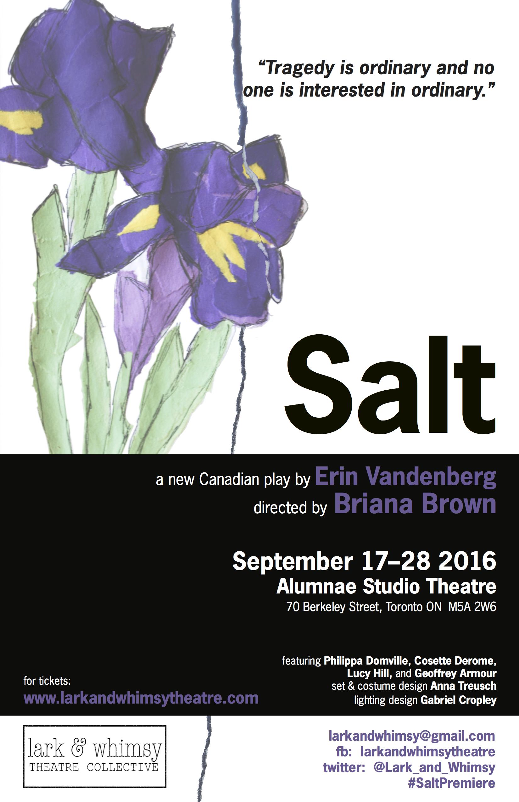 SaltPoster_FINAL.jpg