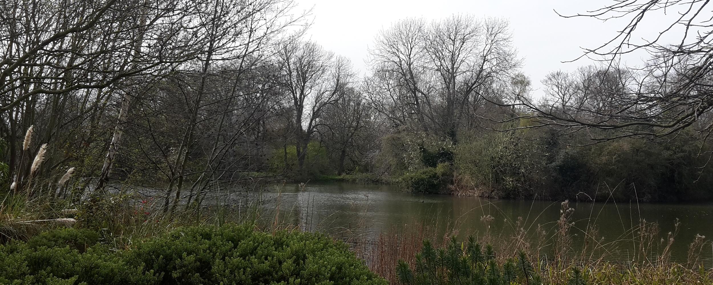 The lake at Battersea Park
