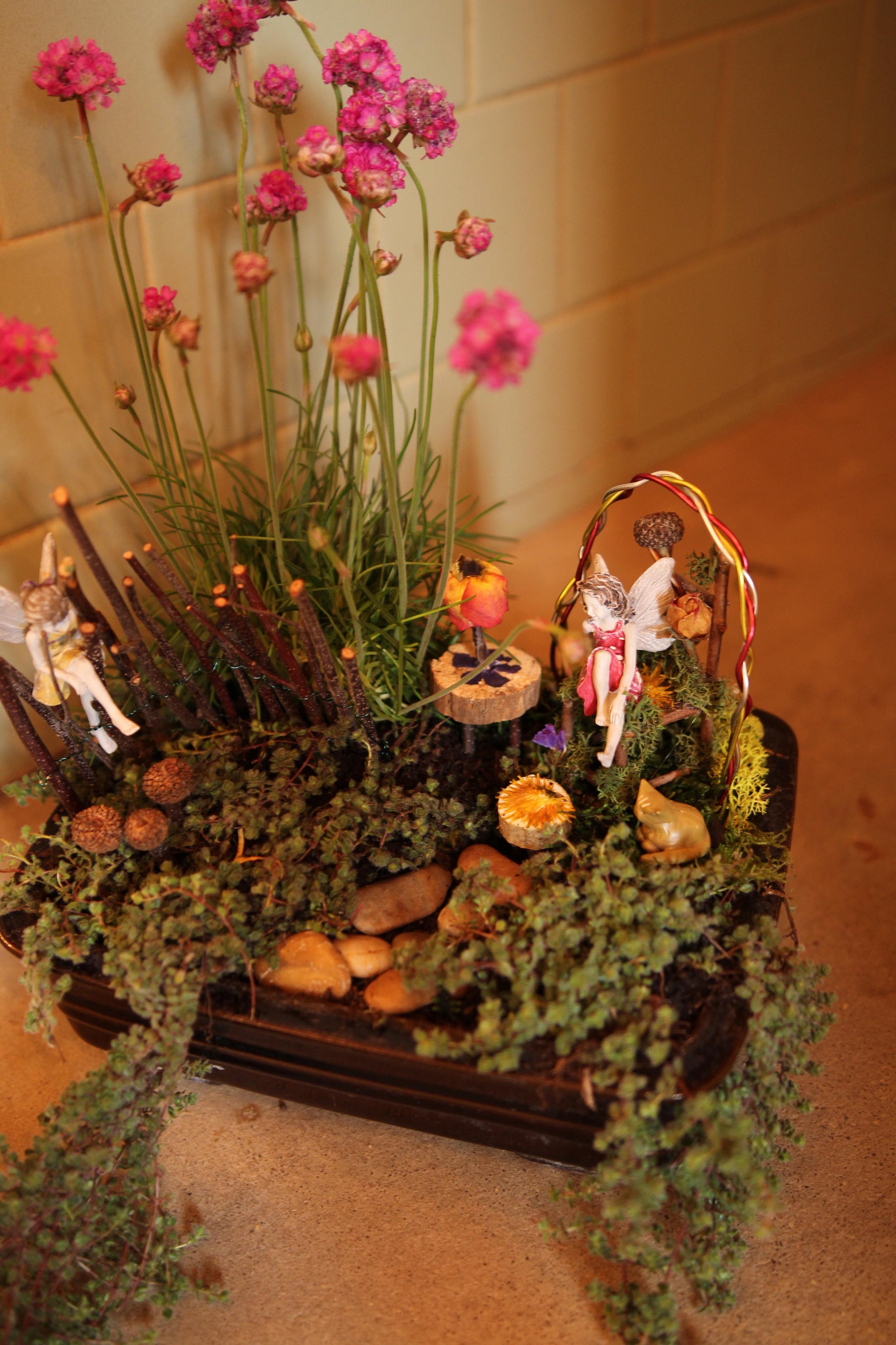 Indoor fairy garden