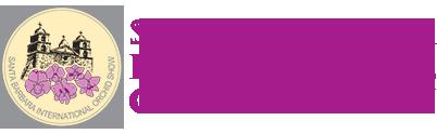 logo-text3.png