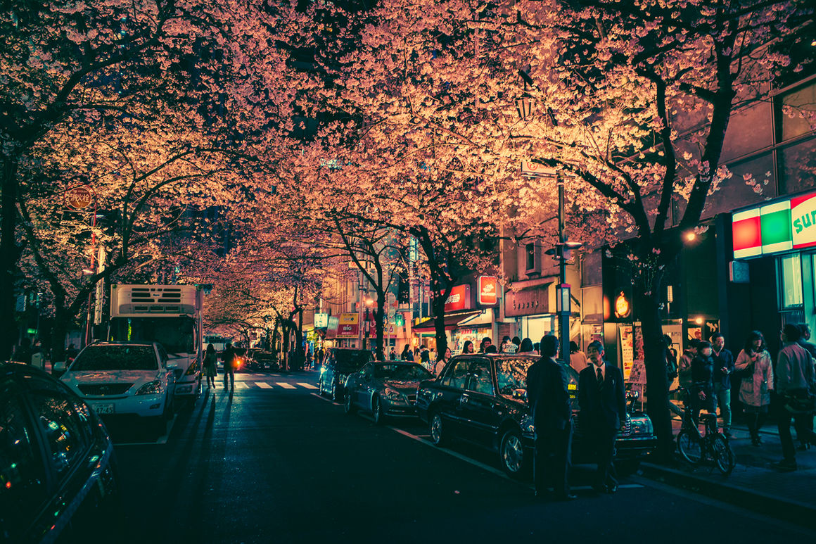 Masashi Wakui_2.jpg