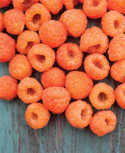 Jam On golden raspberries.jpg