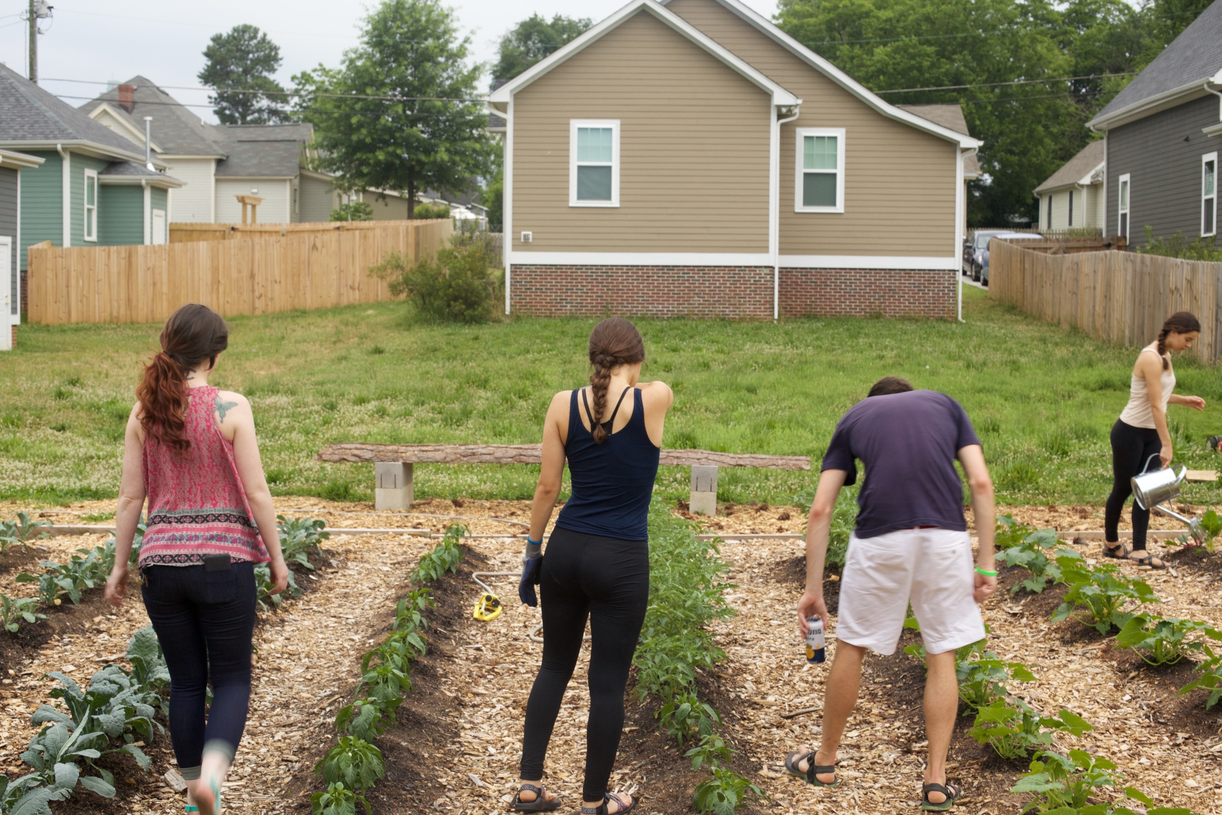 Julia, Gabby, and Dan inspect the rows.