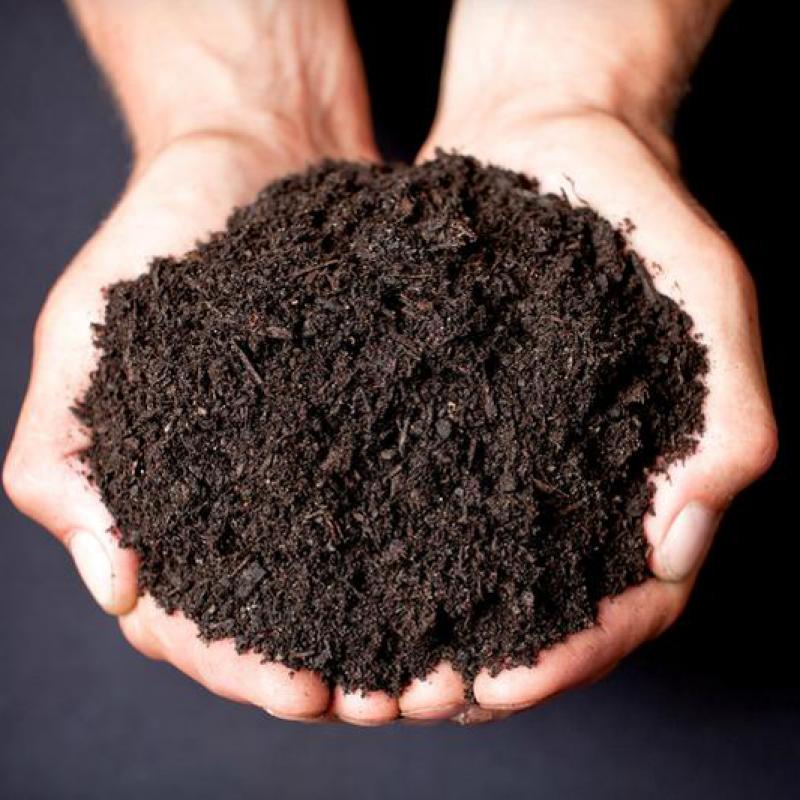 Black-Garden-Soil-n4m6vipfhcsjzeay1hryfzsoyqelwnhc19cz391xz4-n4xu9uuhd5a1434kctzqh256xbtinh77egder47br4.png