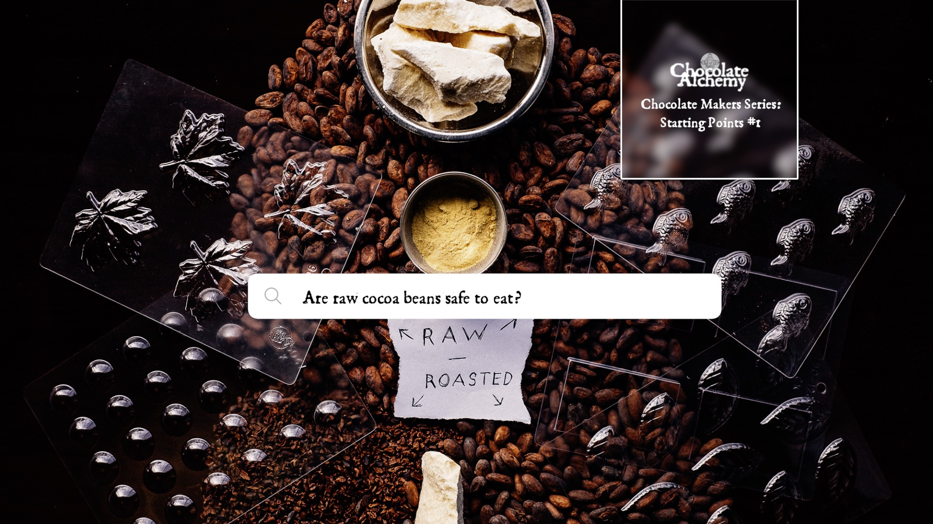 5 Reasons Raw Cocoa Beans aren't meant for Humans.jpg