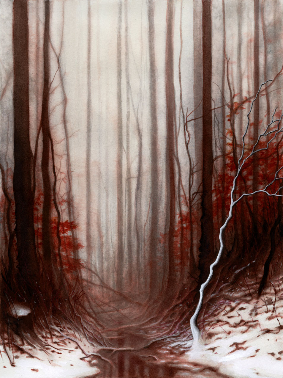 "RED FOREST  12x16"" watercolor + colored pencil personal work 2017"