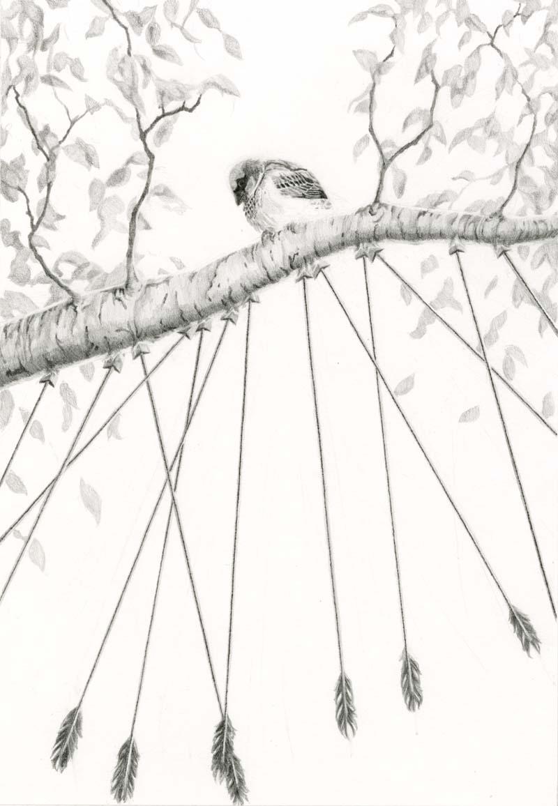 Sparrow 96dpi.jpg