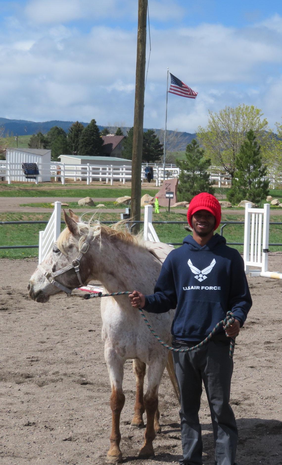Equine+015.jpg