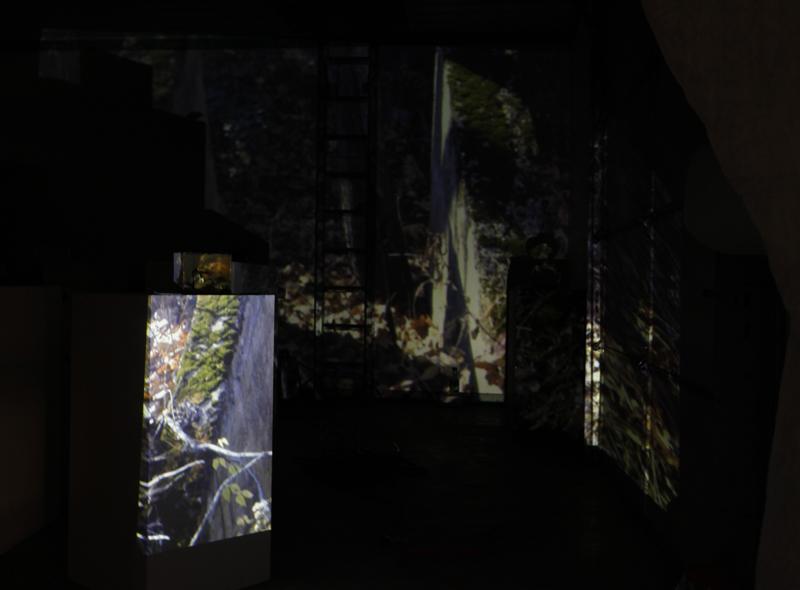 Conrad Hallway Installation 02_web.jpg