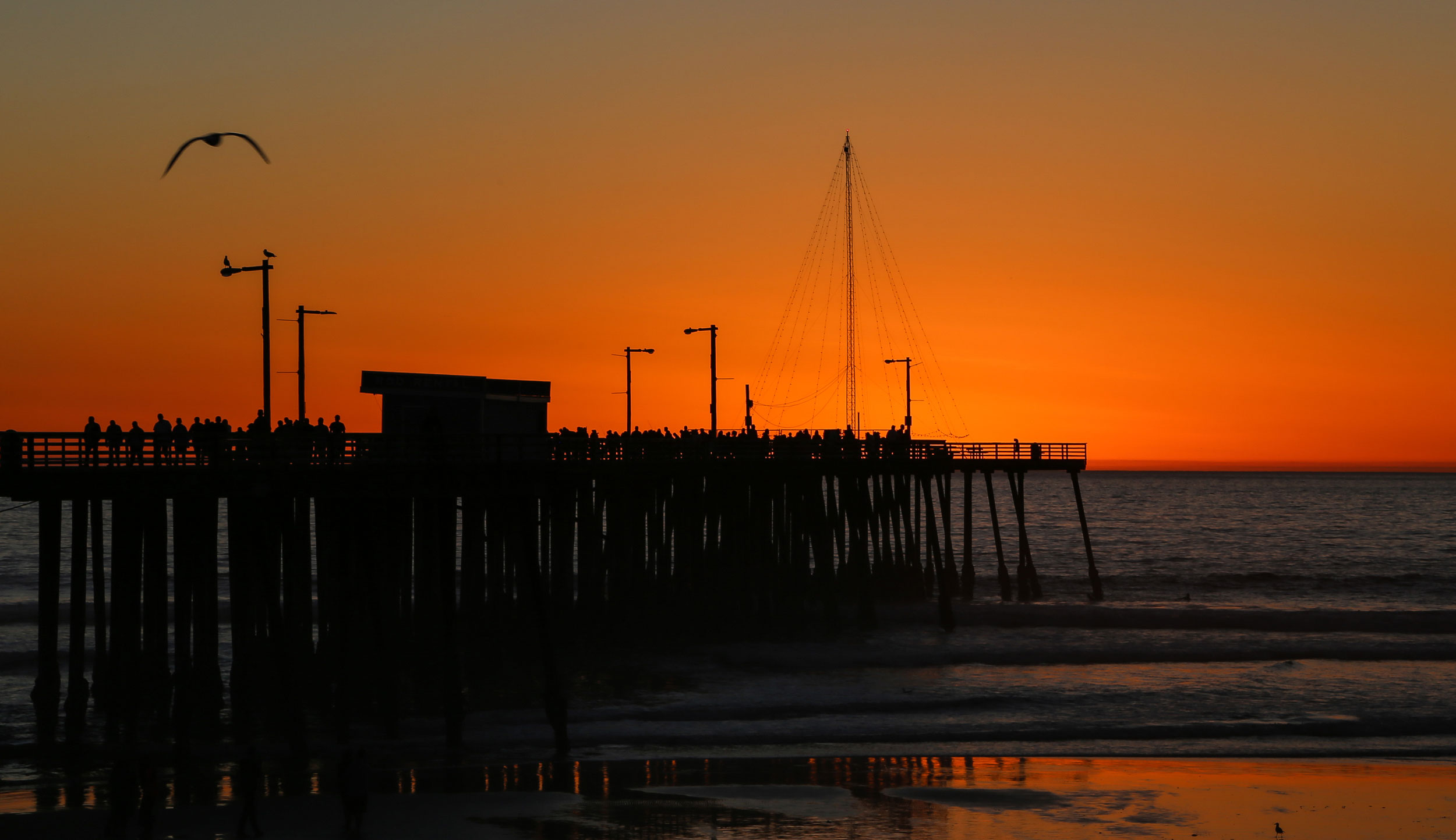 Nature-Pismo-sunset-orange-2.jpg