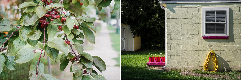 Cherries_YellowHouseCB_Diptych.jpg