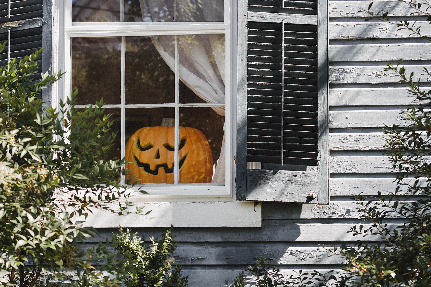 JackOLantern_in_window_0002.jpg