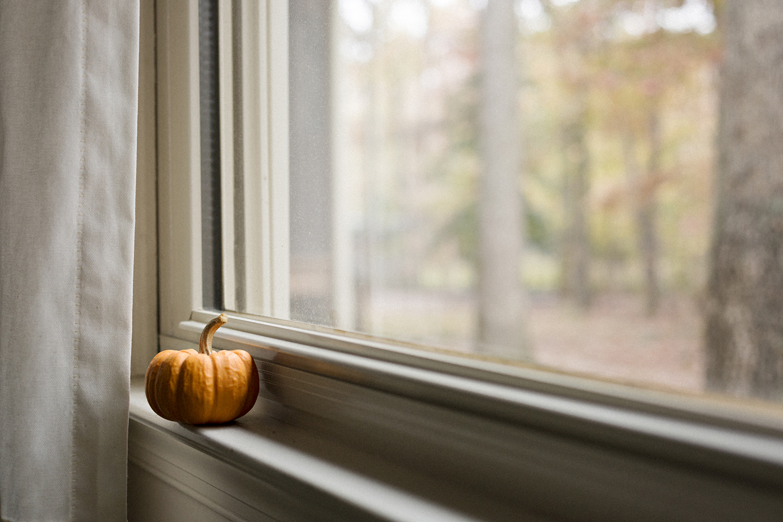 LittlePumpkin_bytheWindow_0018.jpg
