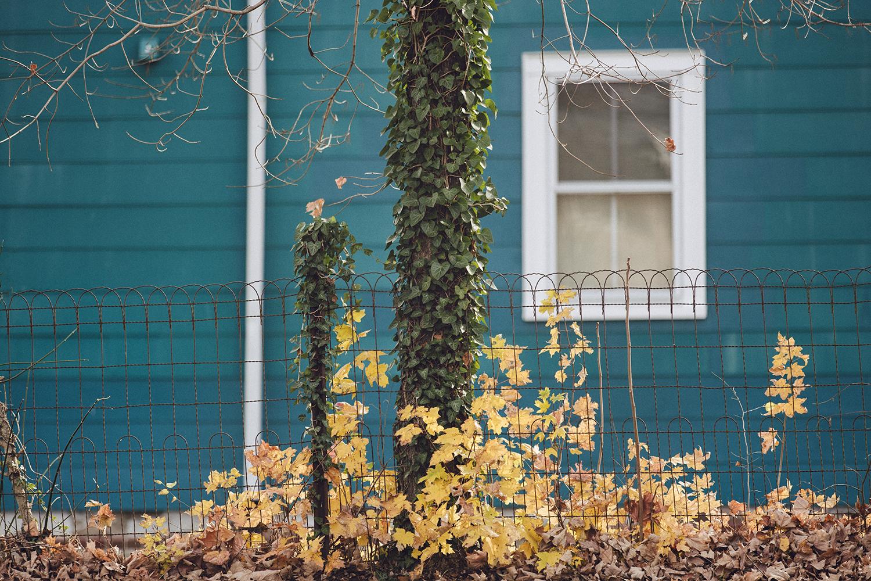 TurquoiseHouse_0004.jpg