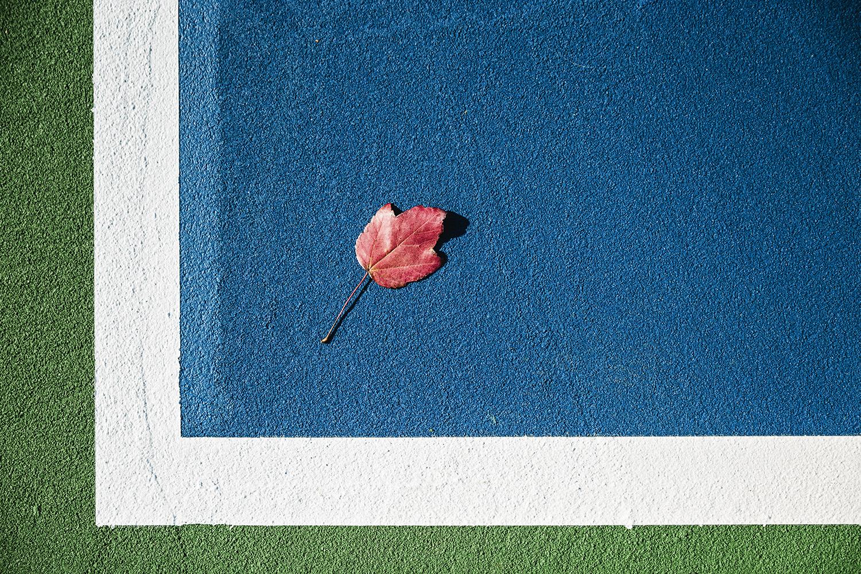 TennisCourt_Kenmore_Fall_0018.jpg