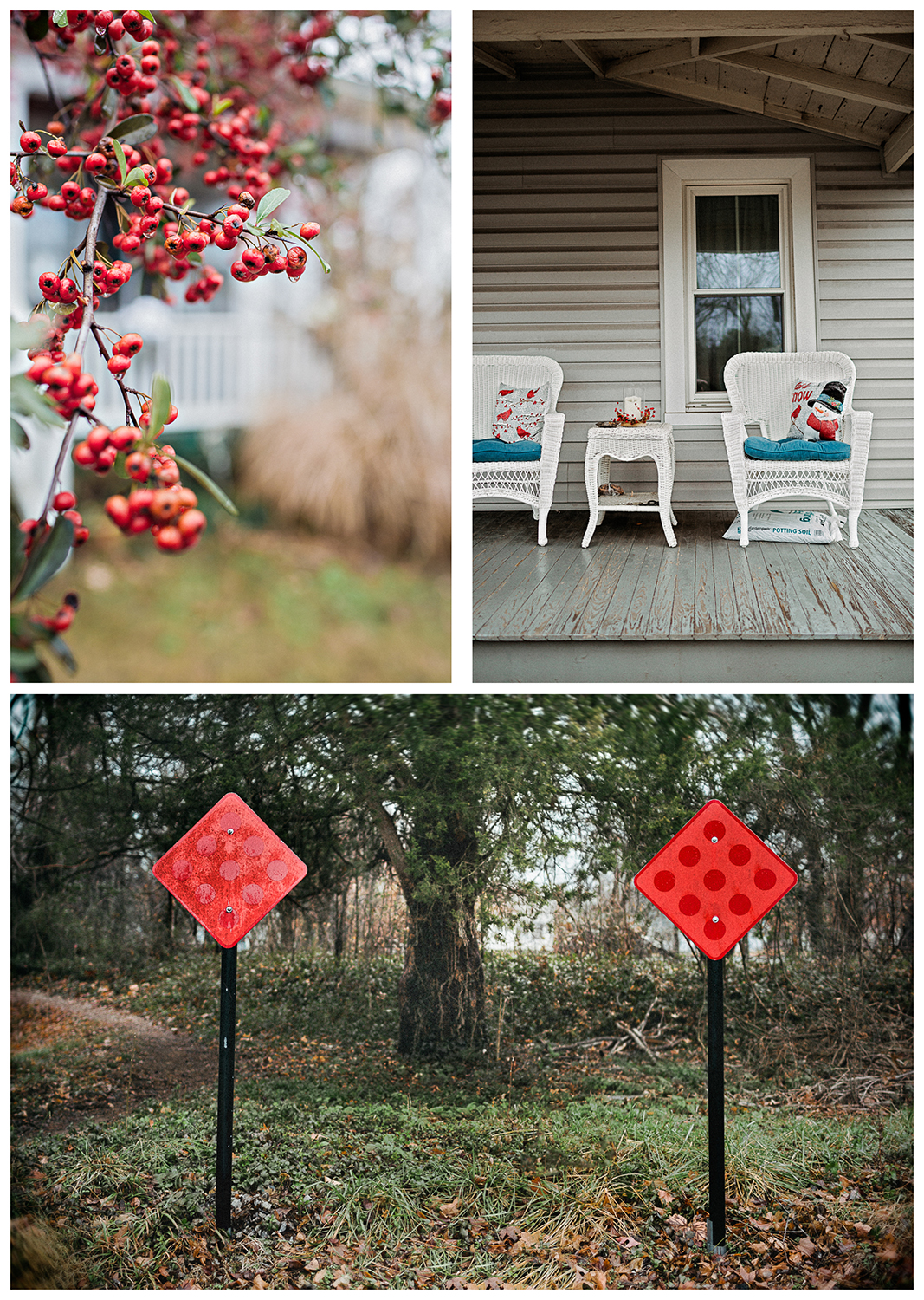 Red_Signs_Berries_Triptych.jpg