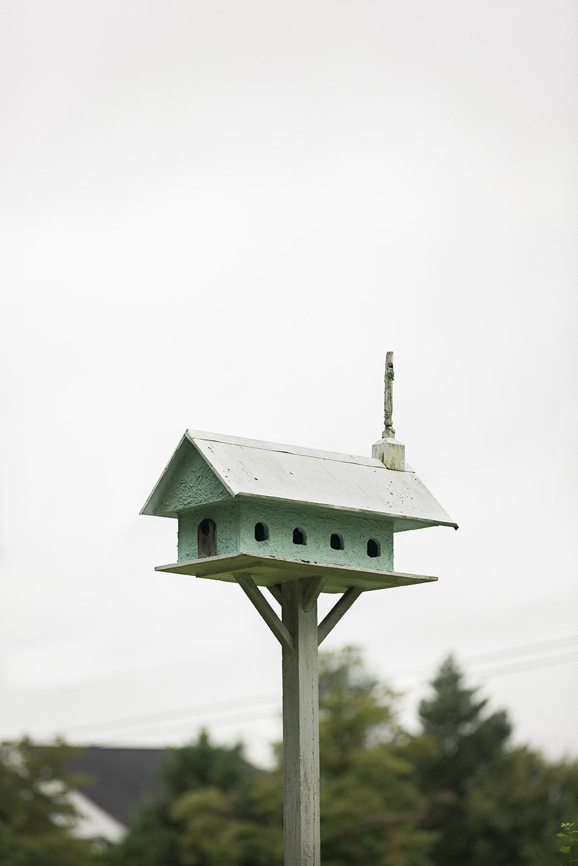 Birdhouse_LafayetteBlvd_0008.jpg